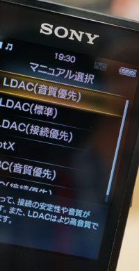 DSC03667