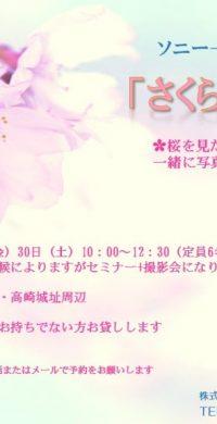 H31.3桜色チラシ