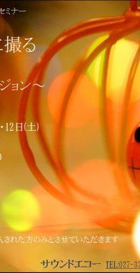 ダークライトハロウイン2019.10.11.12